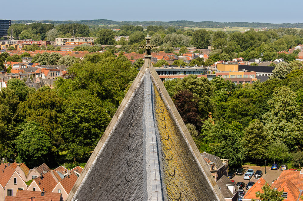 dak grote kerk van alkmaar