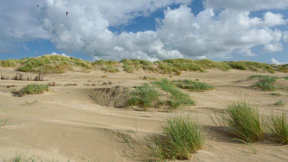 wolkenlucht boven hondsbossche duinen