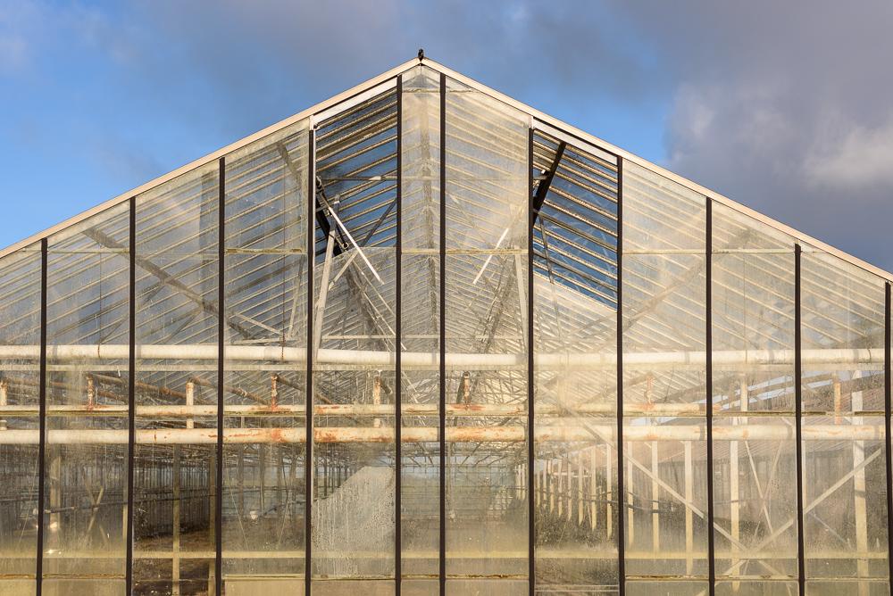 abandoned greenhouses verlaten kassen