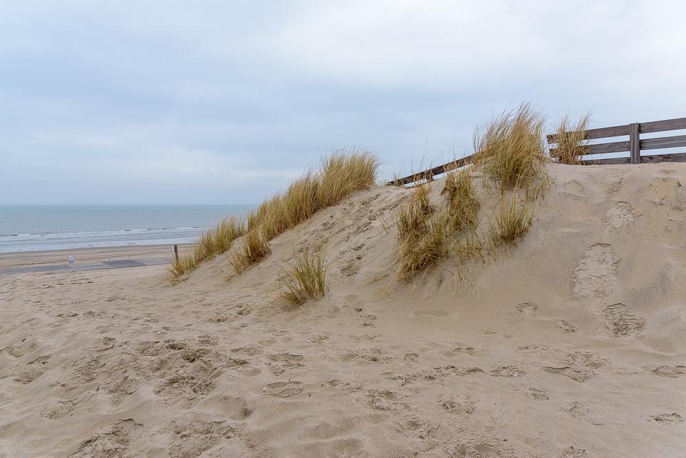 Texel's strand