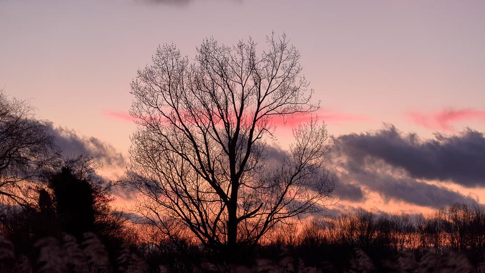 zonsondergang vanaf de ringdijk