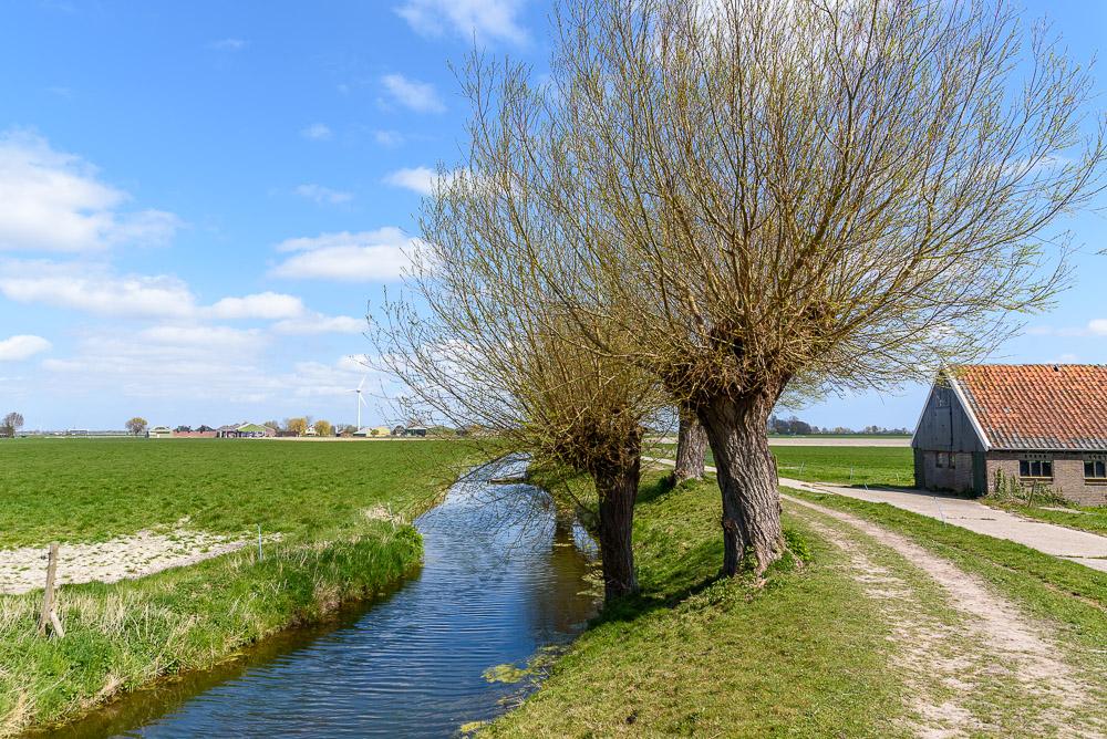 Wogmeerdijk